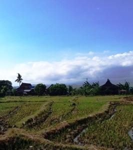 Landschaft in Sued Sulawesi