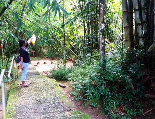 Treppe zum Babybaum in Kambira