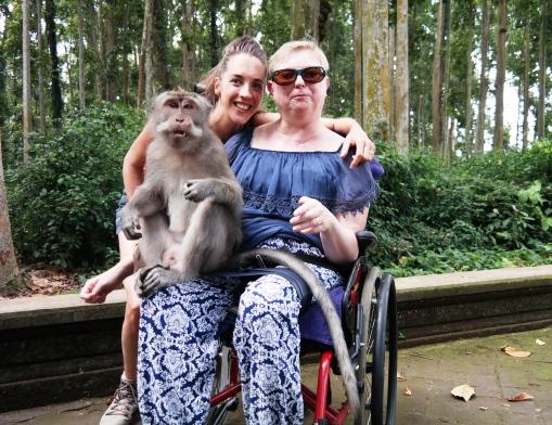 Sangeh Forest. Bali Tagesausflüge mit Rollstuhl