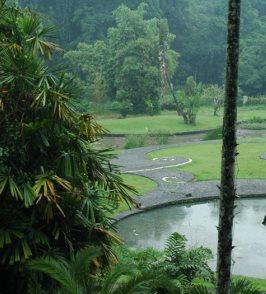 Botanical Gardens Bogor