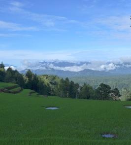 Batutomonga. Rollstuhlreisen in Sulawesi