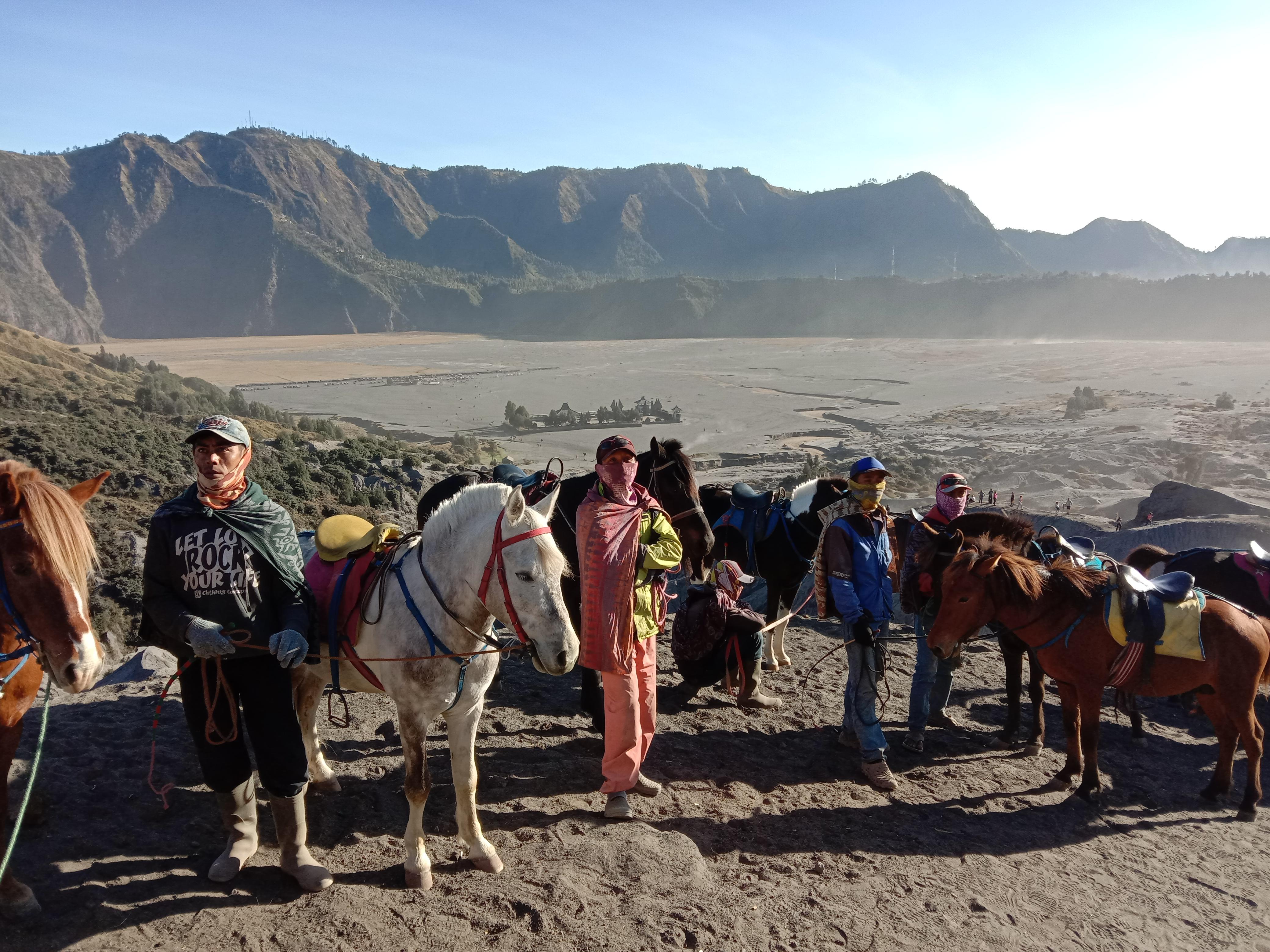 Bromo horse men